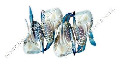 Swimming Crab (half cut) U10 - KIM SON