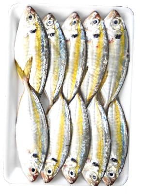 Frozen Yellow Stripe Trevally 1kg - KIM SON