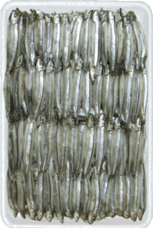 Whole Round Anchovy 500g - KIM SON