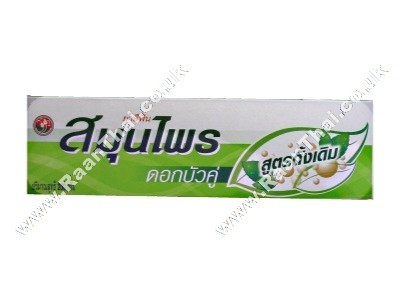 Herbal Toothpaste 150g - TWIN LOTUS