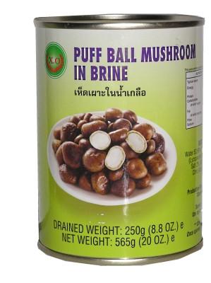 Puff Ball Mushrooms in Brine - XO