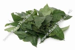 Yanang Leaf - !!!!Bai Yanang!!!! 200g