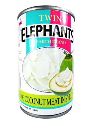 Young Coconut Meat in Syrup - TWIN ELEPHANTS