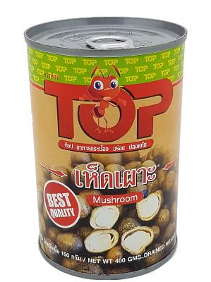 Puffball Mushrooms – TOP