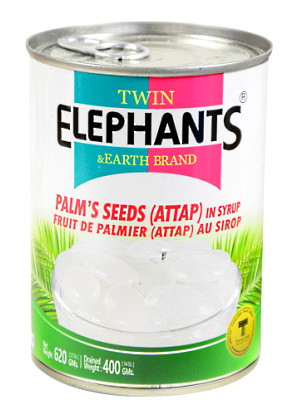 Palm's Seeds (Attap) in Syrup – TWIN ELEPHANTS