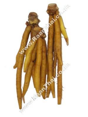 Galingal (Chinese Keys) 1kg