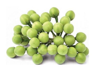 Pea Aubergine (Turkey Berry) 200g