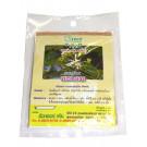 Thai Licorice Tea (!!!!Albizia myriophylla Benth.!!!!) - DR GREEN
