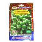 Turkey Berry Seeds - GOLDEN MOUNTAIN
