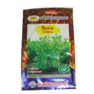 Chinese Celery Seeds - GOLDEN MOUNTAIN