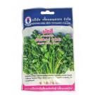 Thai Coriander Seeds - KNOWN-YOU