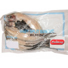 Baby Split Milkfish (Plain) - MA SARAP/ FISHERFARMS