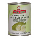 Young Green Jackfruit in Brine - MAE PLOY