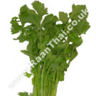 Chinese Celery 200g - !!!!Bai Khun Chai!!!!