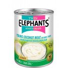 Young Coconut Meat STRIPS in Syrup – TWIN ELEPHANTS