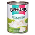 Green Jackfruit in Brine – TWIN ELEPHANTS
